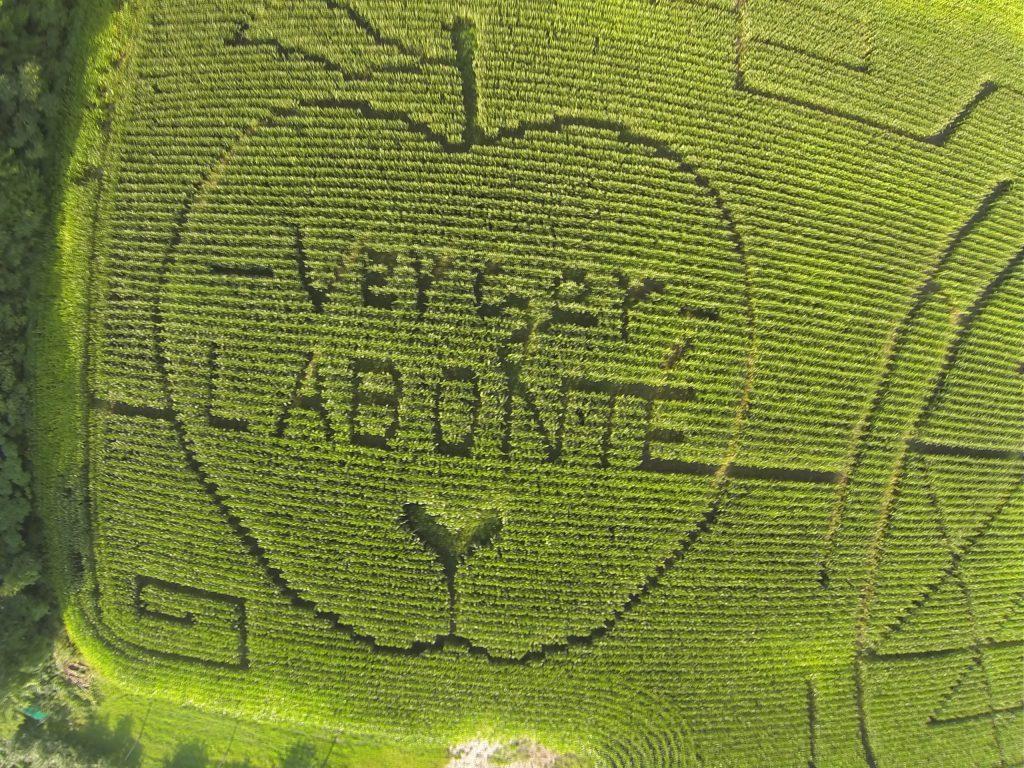 labyrinthe verger labonté automne divertissement