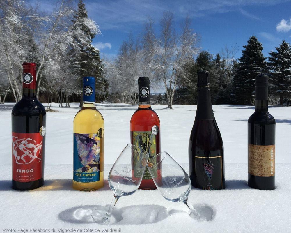 Vin du Vignoble de Côte de Vaudreuil